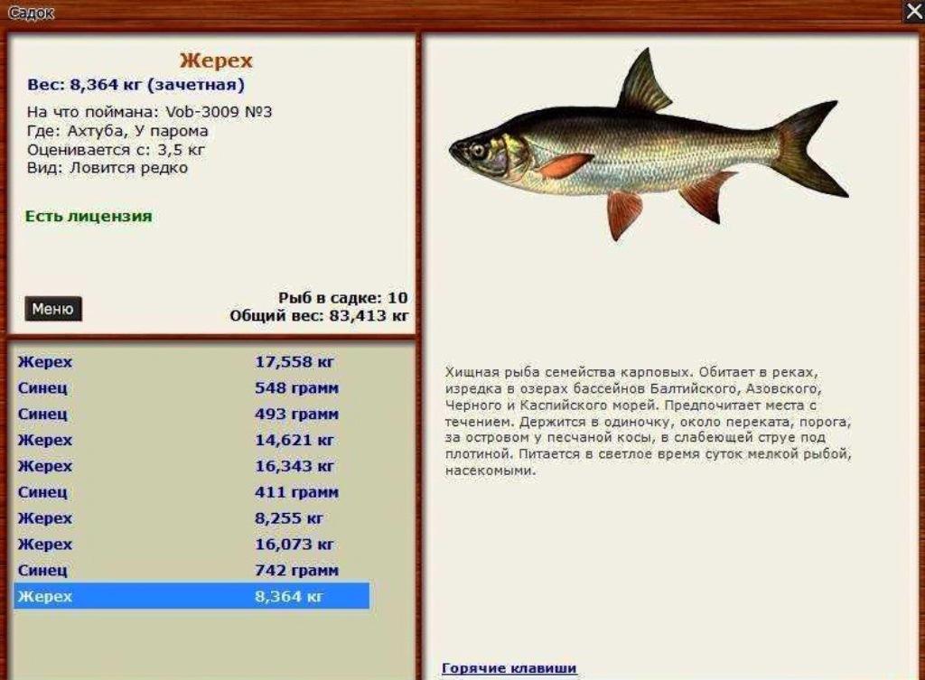 Русская рыбалка 3 1 трейнер